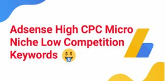 Adsense High CPC Micro Niche Low Competition keywords List